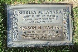 Nelson N Tanaka