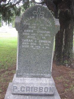 Annie Gribbon