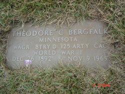 Theodore Bergfalk