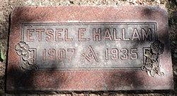 Etsel Elwin Hallam