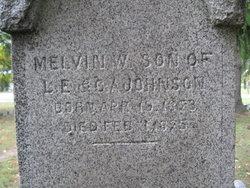 Melvin W Johnson