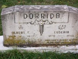 Eusebia Dorrida,