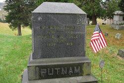 Rev David I Putnam