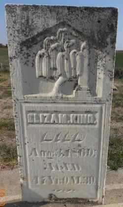 Eliza M. King