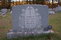 Peter M Mackins