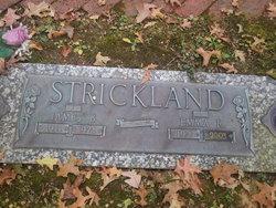 James Burley <I>Burk</I> Strickland