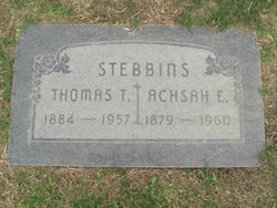 Thomas T Stebbins