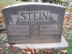 William H Stein