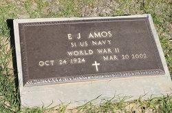 E. J. Amos