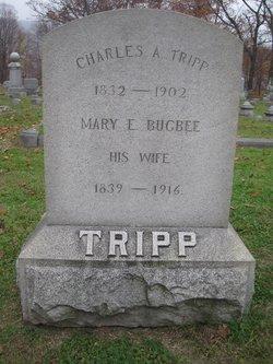 Mary E. <I>Bugbee</I> Tripp