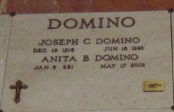 Joseph C. Domino
