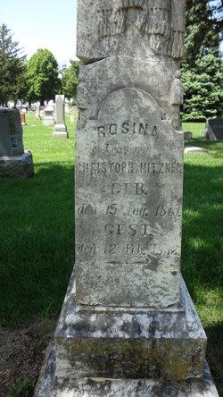 Rosina <I>Freeman or Fruman</I> Mitzner