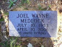 Joel Wayne Medlock