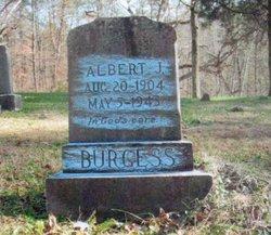 James Albert Burgess