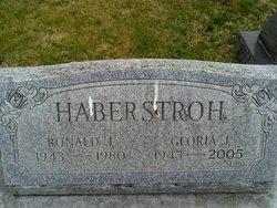 "Ronald J ""Ron"" Haberstroh"