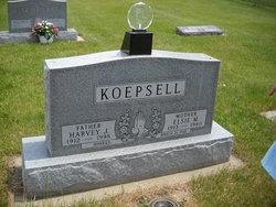 Harvey Koepsell