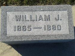 William J Wilson