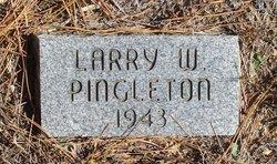 Larry W Pingleton