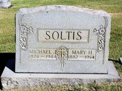 Michael J Soltis