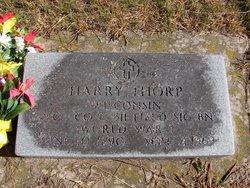 Harry Evans Thorp