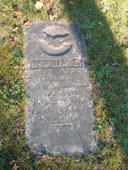 Sophia Elizabeth <I>Cummings</I> Apted