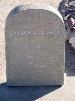 Emilia M Enriquez
