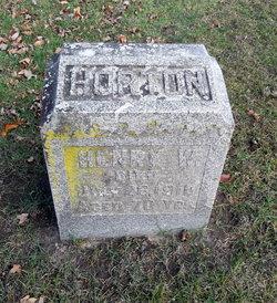 Henry W. Horton