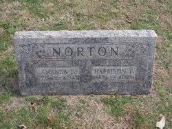 Harrison P Norton