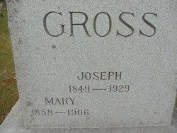 Joseph Gross