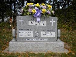 Richard M Veys