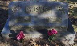Roy E. Austin