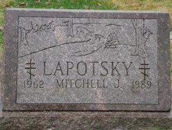 Mitchell J Lapotsky