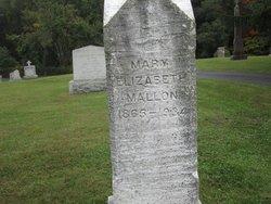 Mary Elizabeth Mallon
