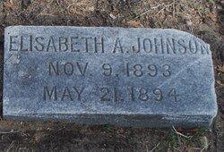 Elisabeth A. Johnson