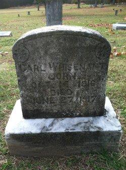 Carl Whisenant