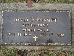 David P Brandt