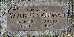 Wylie C Goldman