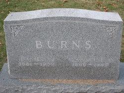 Daniel Willard Burns
