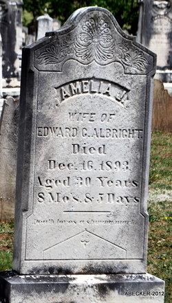 Amelia J Albright
