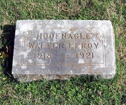 Walter Leroy Hoofnagle