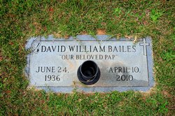 David William Bailes