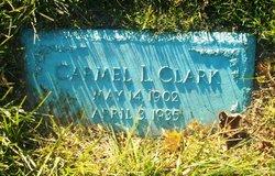 Carmel L Clark