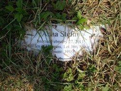 Anna Stefin