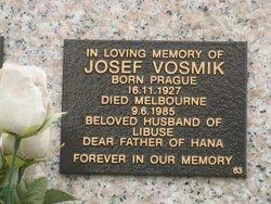 Josef Vosmik