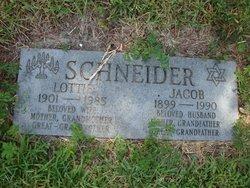 Lottie Schneider
