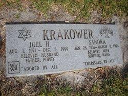 Joel H Krakower