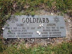 Joseph Goldfarb