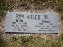 Tessie Busch
