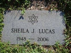 Sheila J Lucas