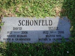David Schonfeld